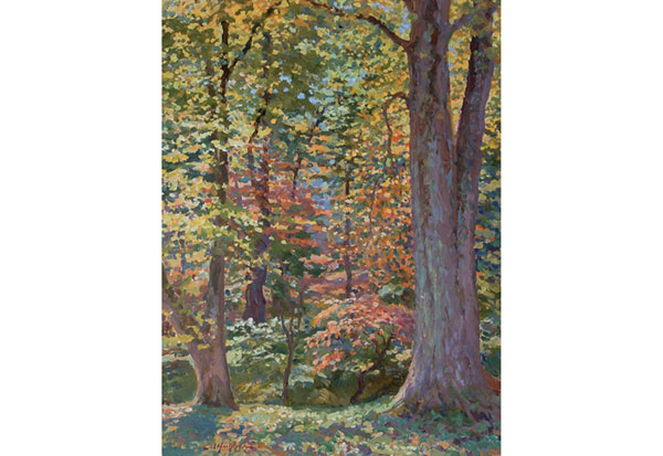 Maple Forest, Central Virginia <br /> 16x12 oil