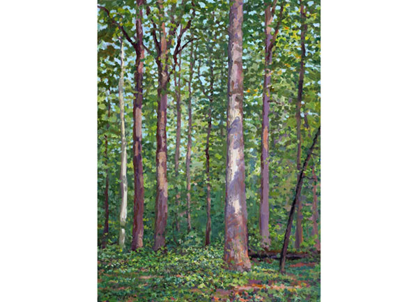 """James Madison Landmark Forest"" <br /> 12x16"" oil - available - #1432 <br /> A summer view of the old-growth forest behind Montpelier mansion, the Madison's home."