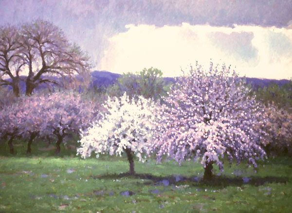 "Taos Orchard <br /> New Mexico <br /> 24x36"" oil"