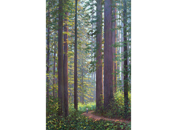 """Among Old Giants"" <br /> 36x24 oil --sold-- #901 <br /> A person pondering scale in a northern California forest."