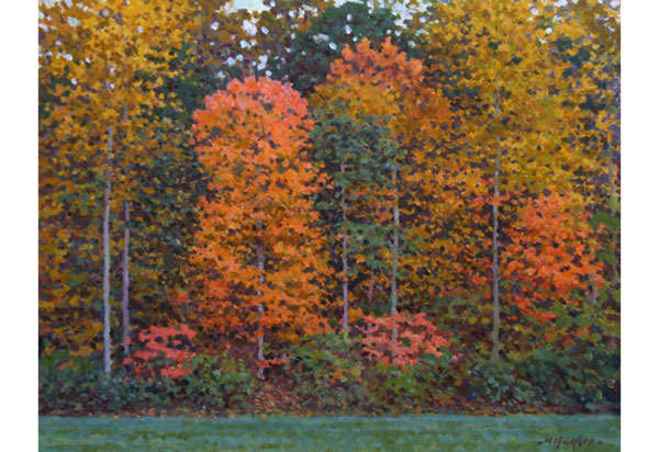 Autumn array of colors, Virginia. <br /> 16x20 oil on canvas